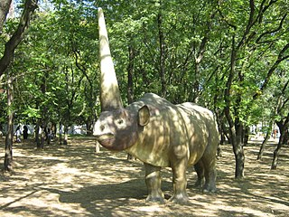The traditional - rhino like unicorn could not fly, simply because the need for unicorns to fly was not strong.
