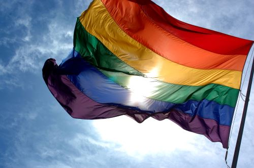LGBTQ+ Flag.  Unicorns celebrate our differences and help culticate appreciation.