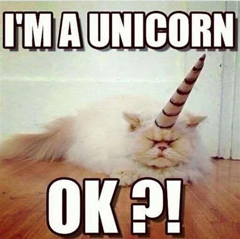 I`m a unicorn, OK?!
