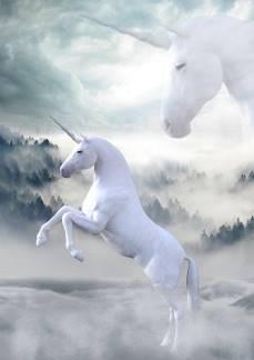 White unicorn mostly has positive associations